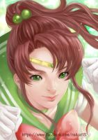 Sailor Jupiter by Archie-The-RedCat