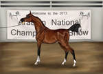 Arabian Nationals Halter Show by ReQuay