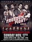 Freedom Fight 2013 flyer by Photopops