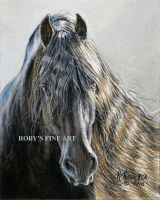 'Friesian Stallion' - Realism by robybaer