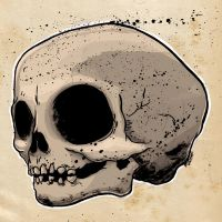 Young Skull by German-Orozco