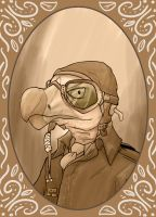 Aviator by Dubhghall