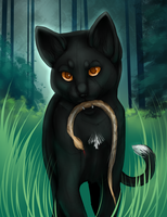 Ravenpaw WIP by Sylvanimus