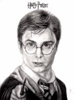 Harry Potter by tanjadrawing