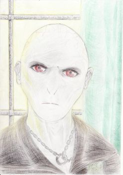 Img Lord Voldemort in Malfoy Manor by XervandisUlcron