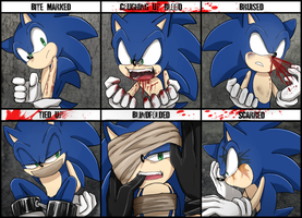 Character Abuse Meme-Sonic the Hedgehog by Unichrome-uni