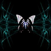butterfly abstract by todds201