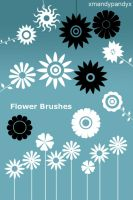 Flower Brushes PSD by mfcreative