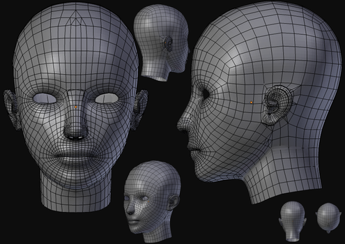 Face in Wireframe by JuliaMoller
