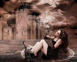 The castle lady by annemaria48