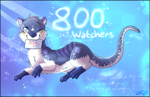 800 Watchers! by Fayven