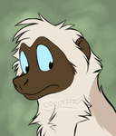 Sifaka character by Cocotato