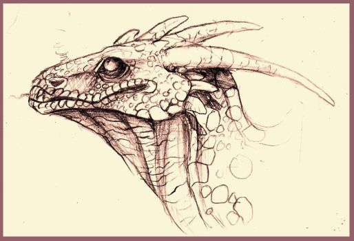 Dragon. by Stitchy-Face