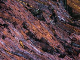Purple Thin Section Texture III by GreenEyezz-stock