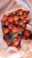 Mom's Tomatoes 2 by BigMac1212