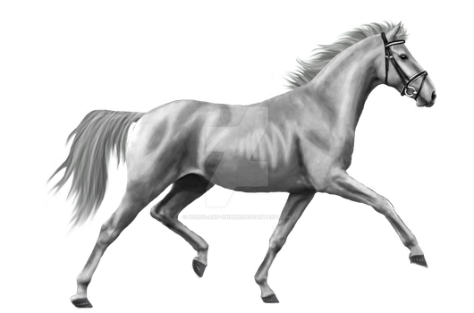 YHH | UNLIMITED Points by Horse-Art-Online