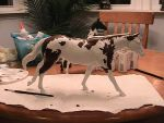 'Ezia' Custom Breyer (Work In Progress) by BeachviewFarm