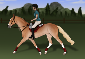 YHH - Endurance Horse COMPLETE by theRyanna