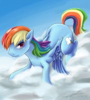 Dashie and her cloud by VaneFox