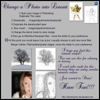 Photo into Lineart Tutorial by tina1138