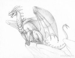 New sketch for Zoroha by Dragarta
