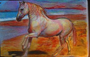 Once upon a time a horse named Storm by AnnarXy
