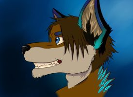 ::The Sky One:: by NordyFox
