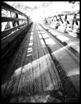 Country Bridge Gilroy CA Aowoodward2 by Intrigueme