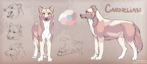 Character Reference: Carnelian by Hlaorith