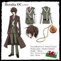 OC of mine : Wales (Hetalia) by Ys-Ladydrac21