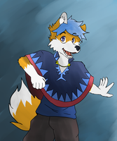 Poncho Fox by afoxen