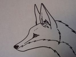 Another Fox by LaDeary
