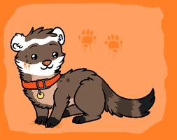 Sharpie the Ferret by RAT-B0Y
