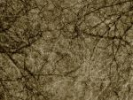 Antique Texture 1 by Inthename-Stock