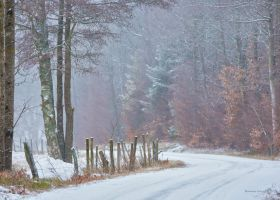 Winter at the country road by roisabborrar