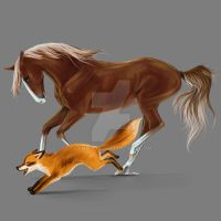 Horse and fox by Lenika86