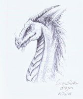 Grandfather Dragon by Lioness123