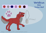 Veridicus Reference Sheet (2013) by Krissi2197