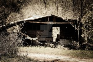 Shed II by mikeheer