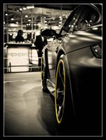 Techart Porsche I by Andso