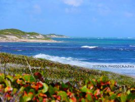 Barbuda dream by burcyna