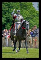 Sir Toby Scottish Knight 2 by SCM