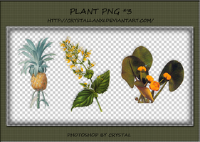 PNG PACK#4 - Plant by Crystallanxi