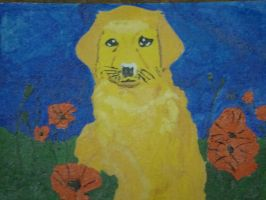 Puppy in poppies by Teeno2007