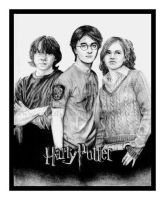 HP4 trio by jackslilsparrow