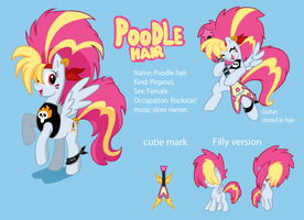 Poodle hair model sheet by Lordstevie