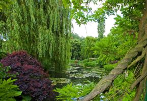Giverny 2 by ennes