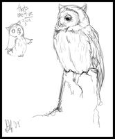 Mrs Owl by nightspiritwing