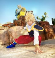 Yardrat Goku Cosplay 2 by Oniakako