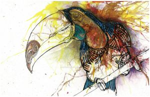 Toucan by dehydrated1